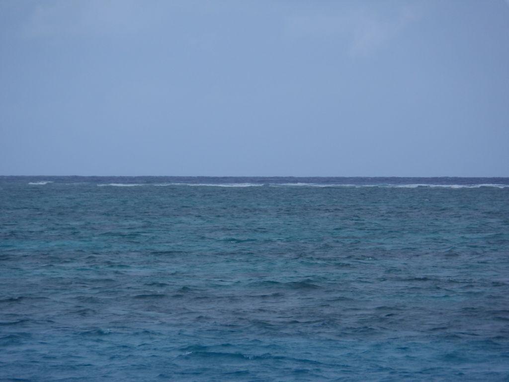 Resiflerin kırdığı dalga