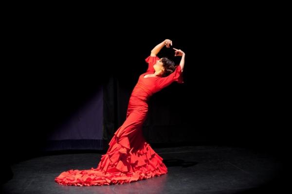 flamenco_231