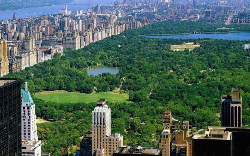New York Şehri, (İngilizce: New York City (NYC)) Amerika Birleşik Devletleri'nin en kalabalık şehridir. Aynı isimli New York eyaleti'nde yer alır. Yüz yıldan fazladır dünyanın en önemli ticaret ve finans merkezlerinden biridir.